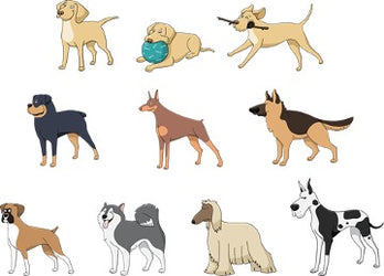 10 prints of different dogs on a white background