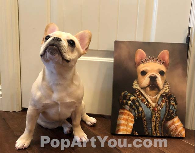 French bulldog sits on the floor next to a portrait of a bulldog dressed as a queen