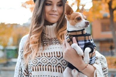 Girl in a sweater holds a dog in a sweater in her arms