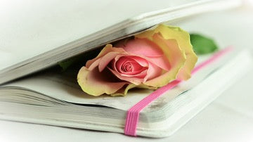 White notebook with a rose inside