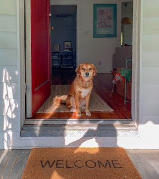A dog seats in the doorway, and there is a rug with the inscription WELCOME in front of it