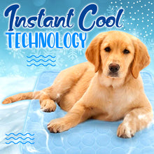 Load image into Gallery viewer, PawsUp! Pet Cooling Mat