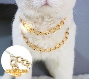 Golden Pets Collar