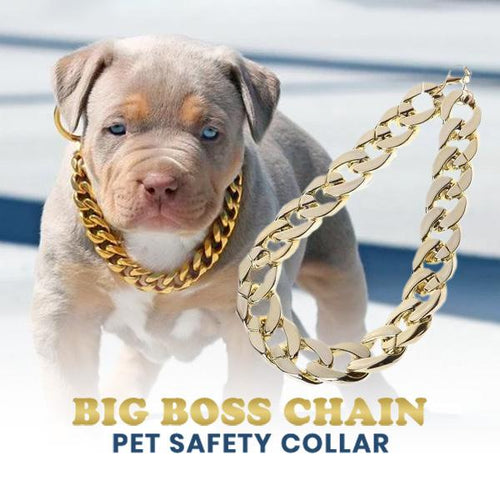 Big Boss Chain Pets Safety Collar