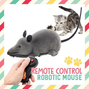 Remote Control Robotic Mouse