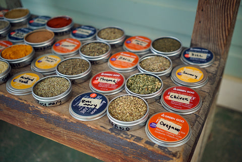 Once-empty Green Goo salve tins filled with herbs and spices