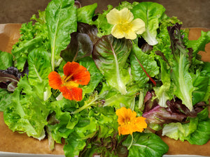 Aquaponic & Field Grown Spring Mix 250g
