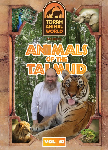 Living Torah Museum - Animals of the Talmud (Video)