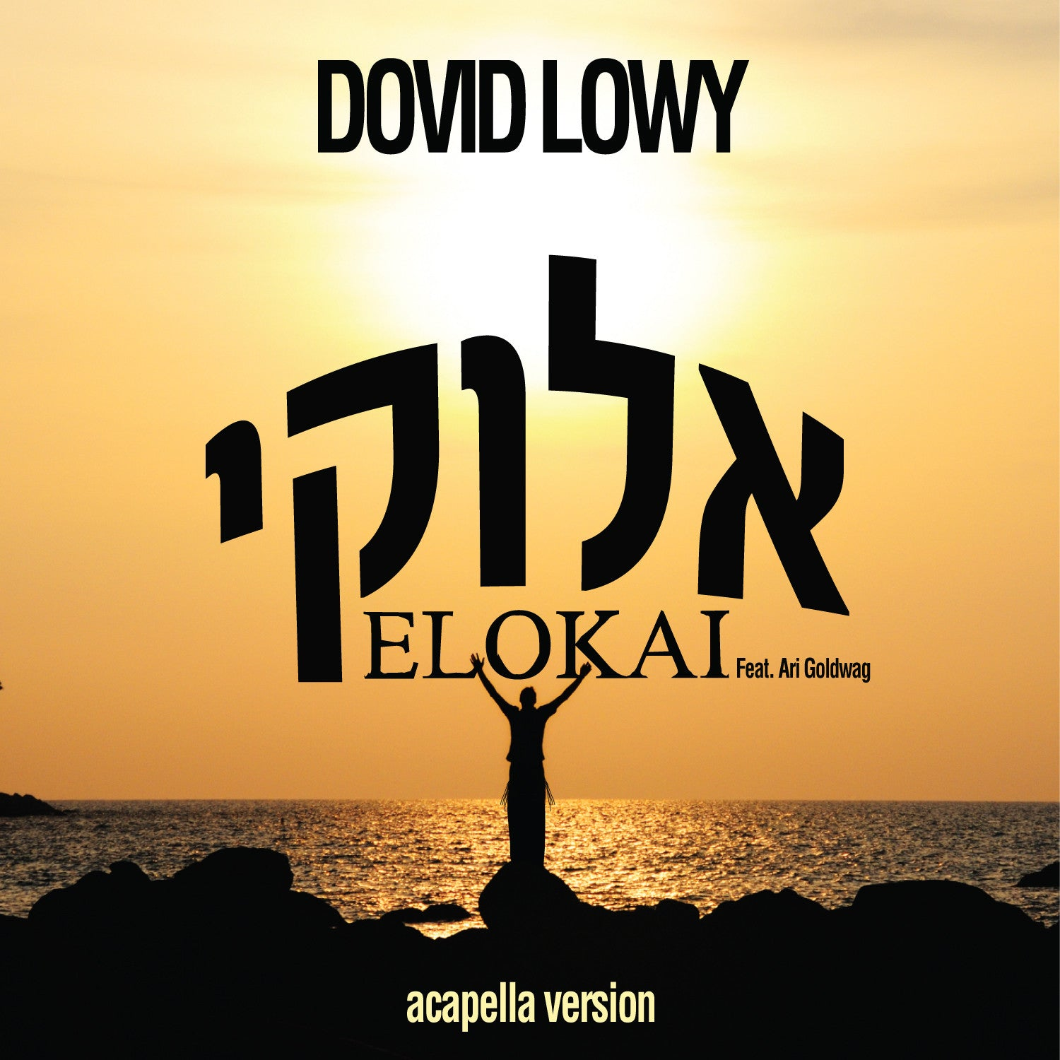Dovid Lowy - Elokai - Free Acapella single - feat. Ari Goldwag