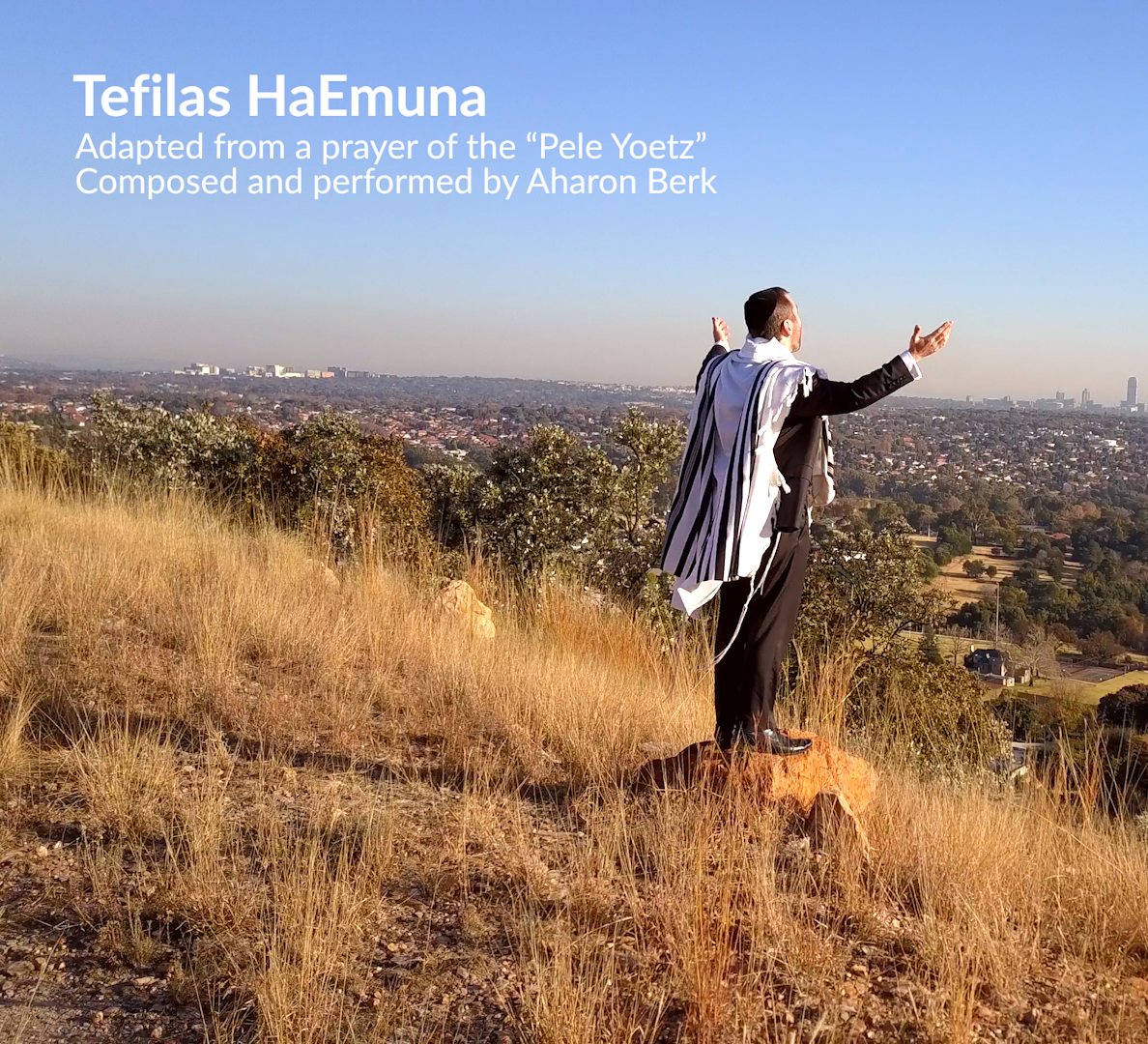 Aharon Berk - Tefillas Ha'Emuna (Single)
