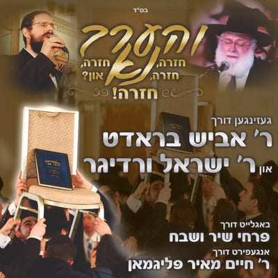 Abish Brodt/Yisroel Werdyger - Veharev Na (Single)