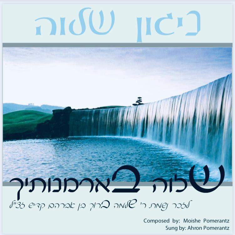Ahron Pomerantz - Shalom Rav (Single)