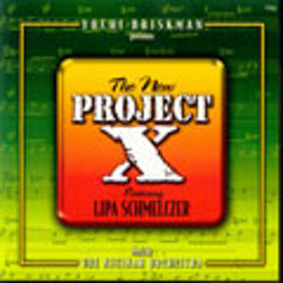 Lipa Schmeltzer - New Project X