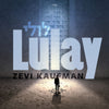 Zevi Kaufman - Lulay (Single)
