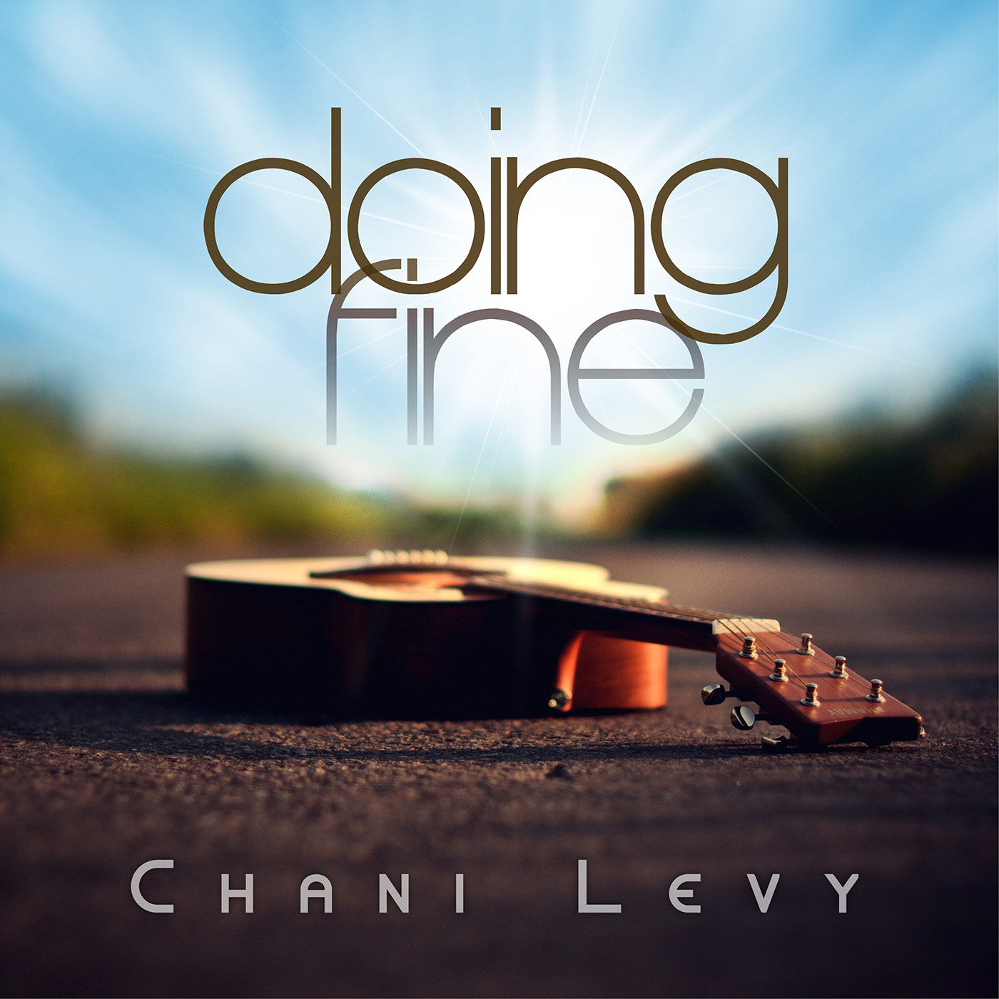 Chani Levy - Doing Fine (for women & girls)