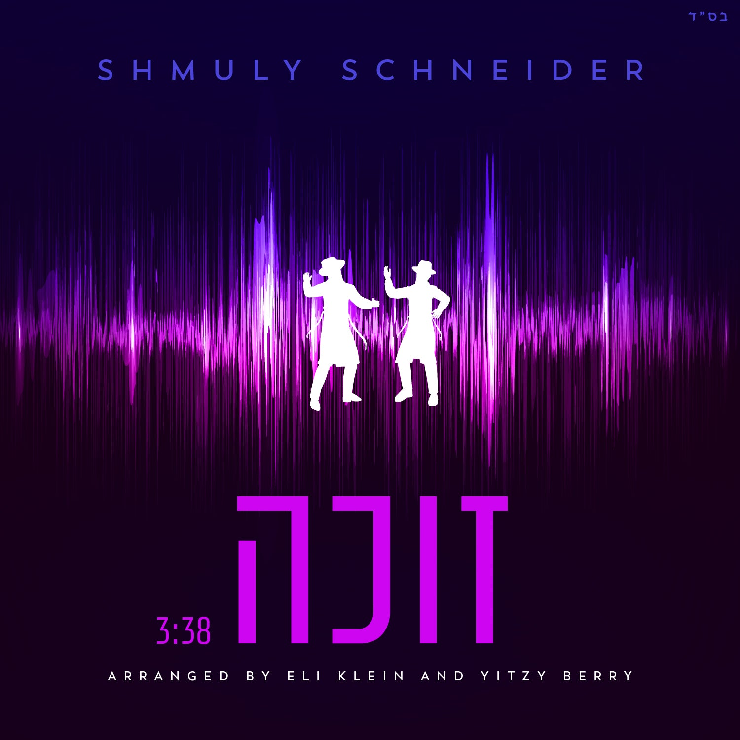 Shmuly Schneider - Zoche (Single)