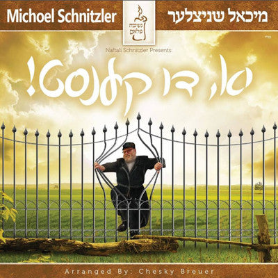 Mishoel Schnitzler - Yu Di Kenst - Yes You Can