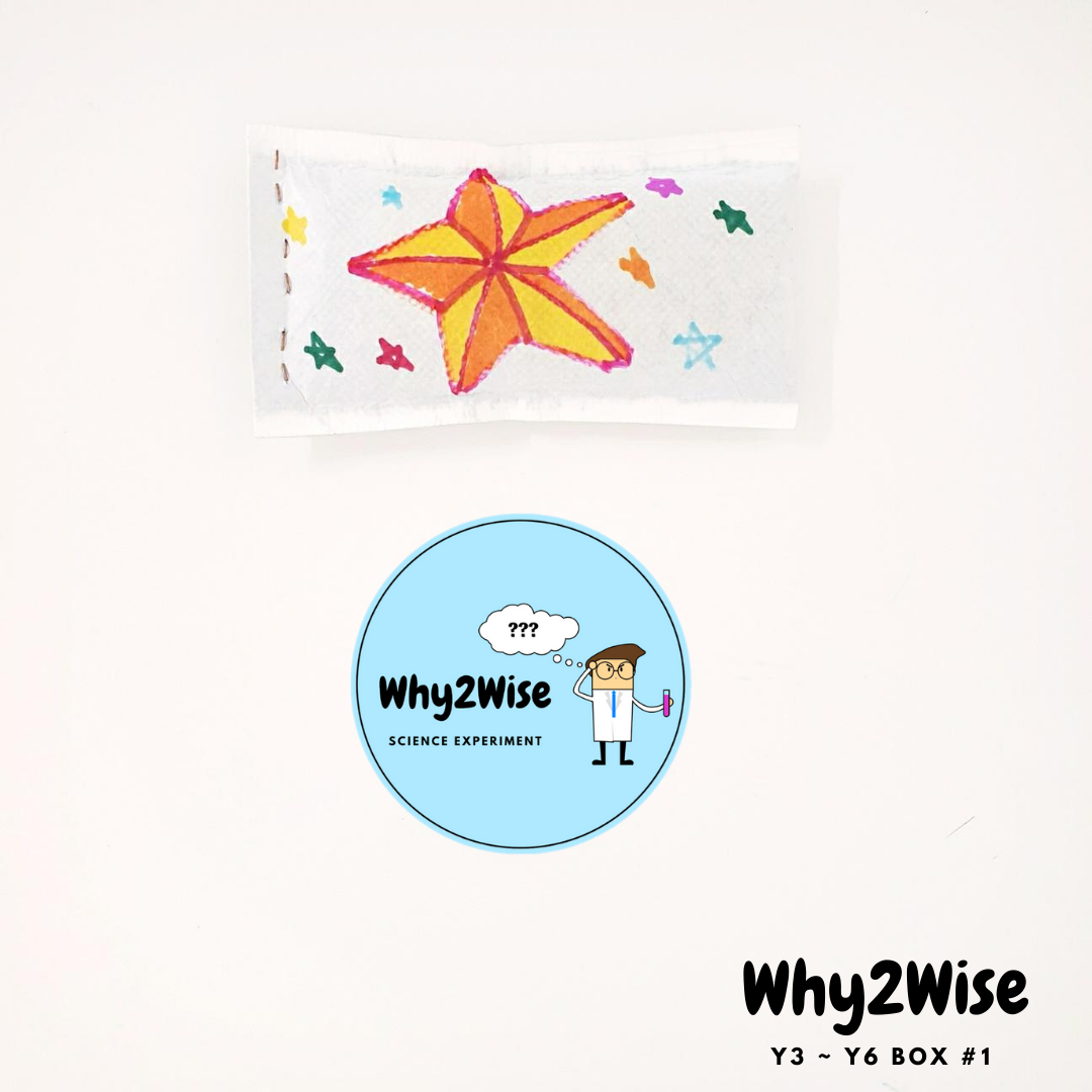 [Online Learning] Y3~Y6 Science Box #1 *pay with Creative Kids - Why2Wise