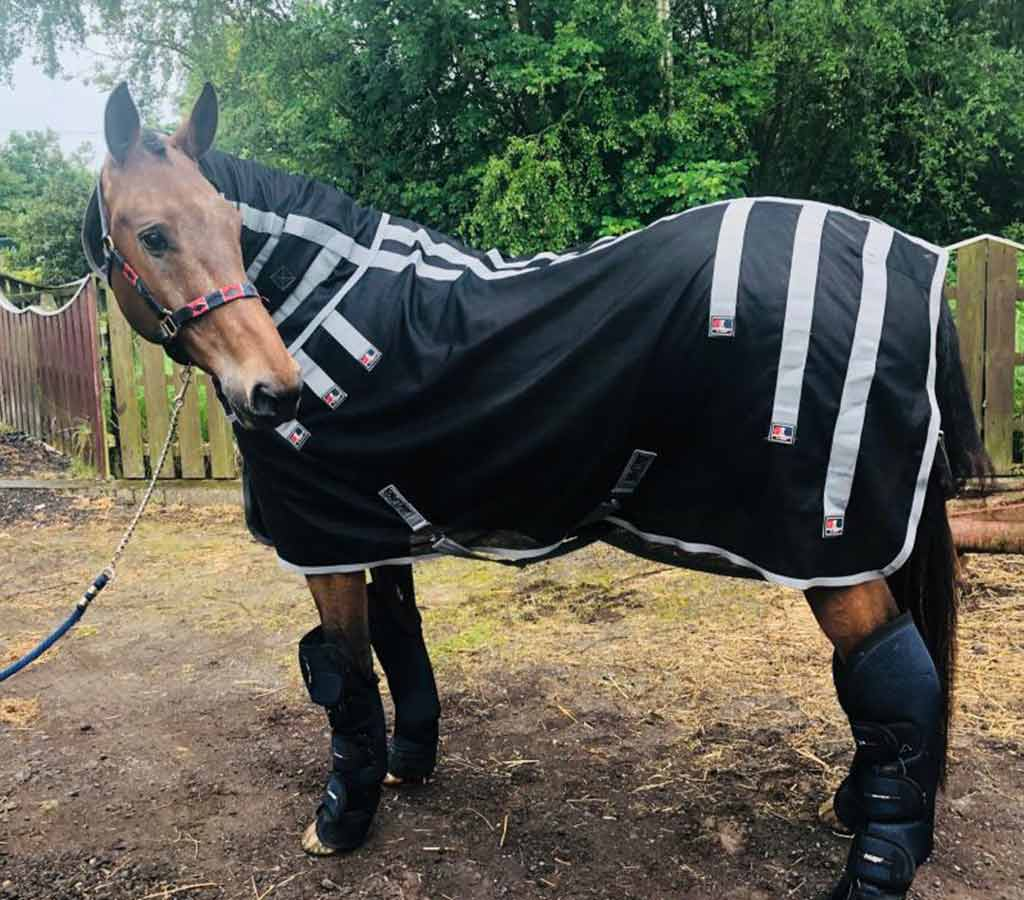 Magni-Teque Magnetic Horse Rug - Libby