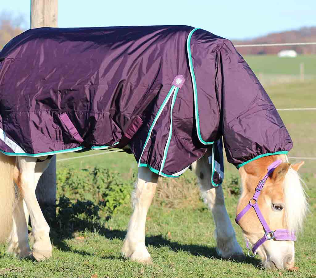 Buster 200g Turnout Rug with Neck Cover - in field