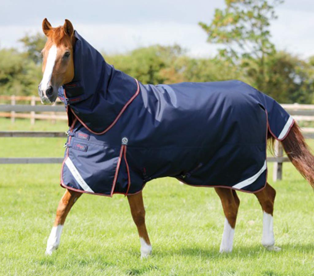 Titan 450g Turnout Rug with Neck Cover