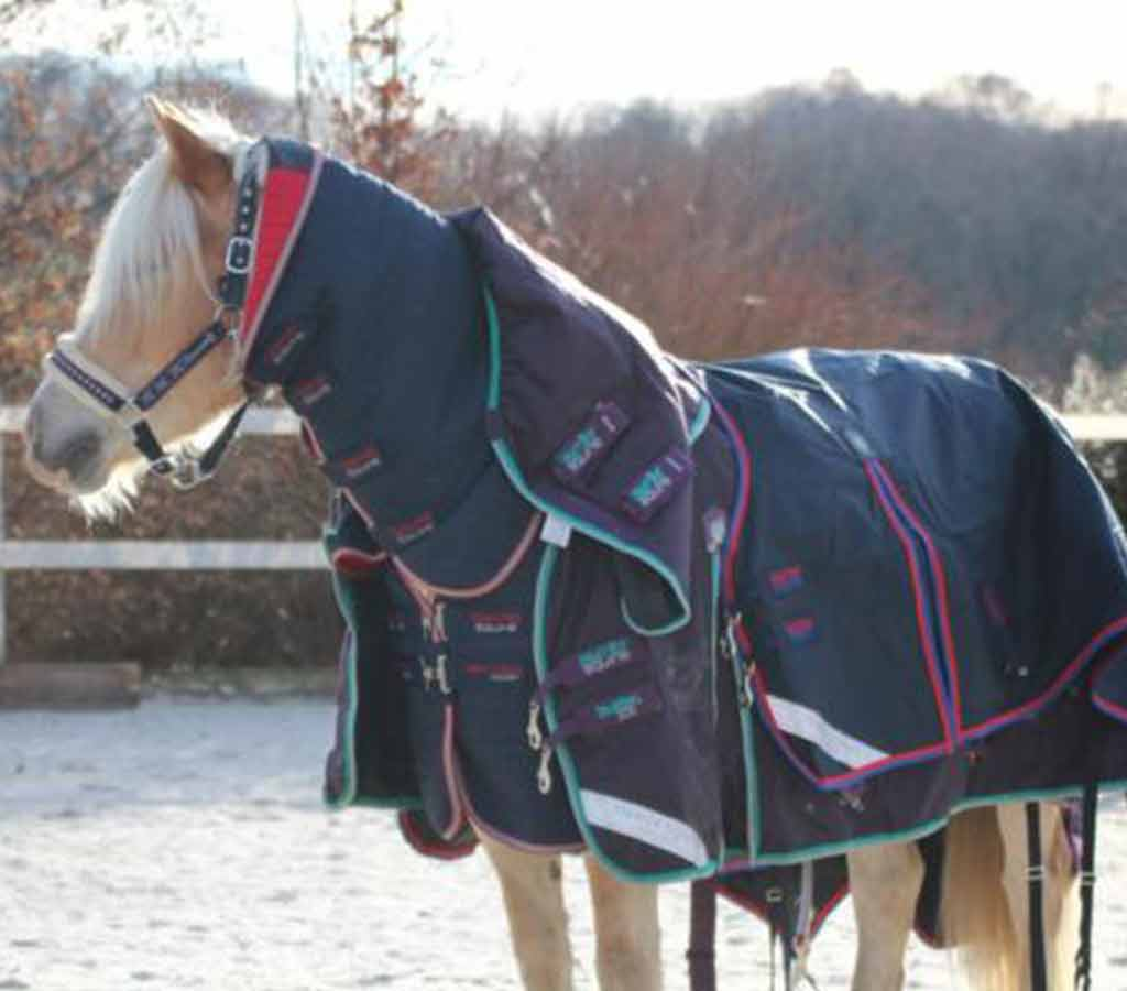 Finding the Right Horse Rug