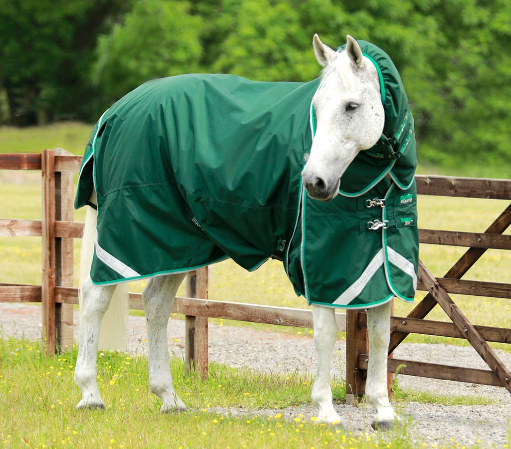 Buster 200g Turnout Rug with Neck Cover