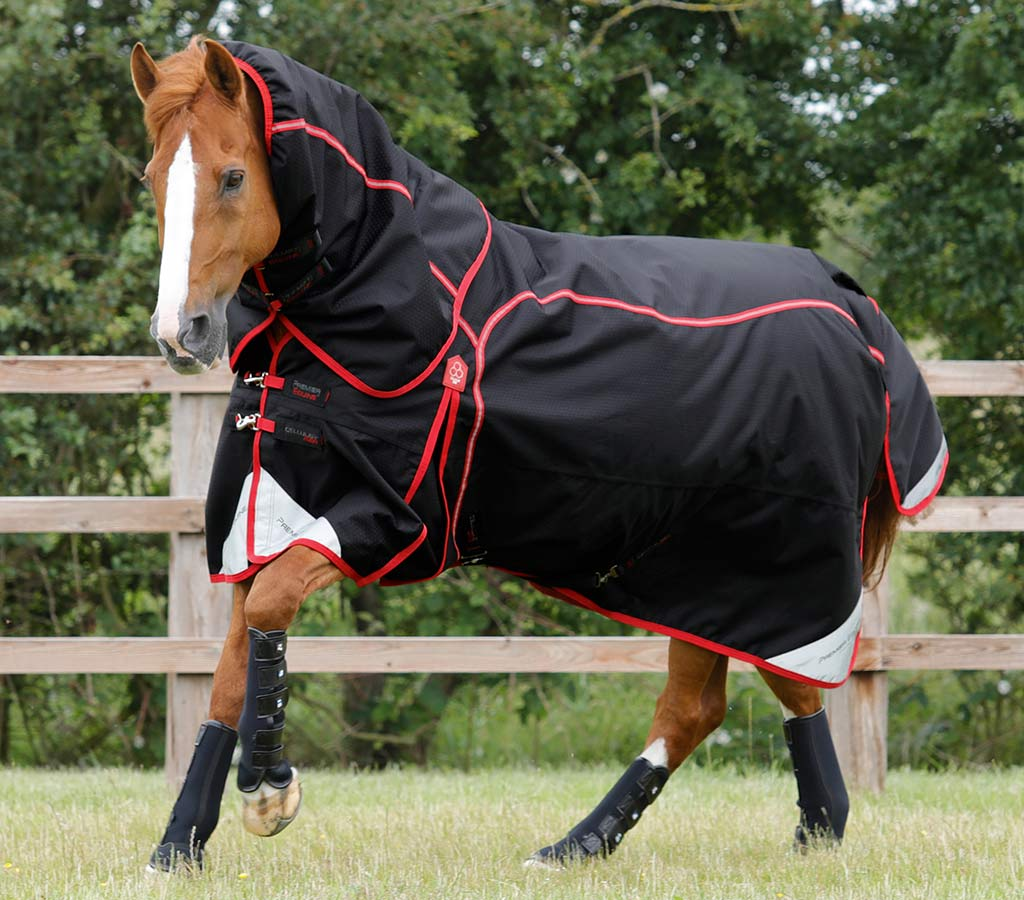 Cellular Zone 450g Turnout Rug with Neck Cover