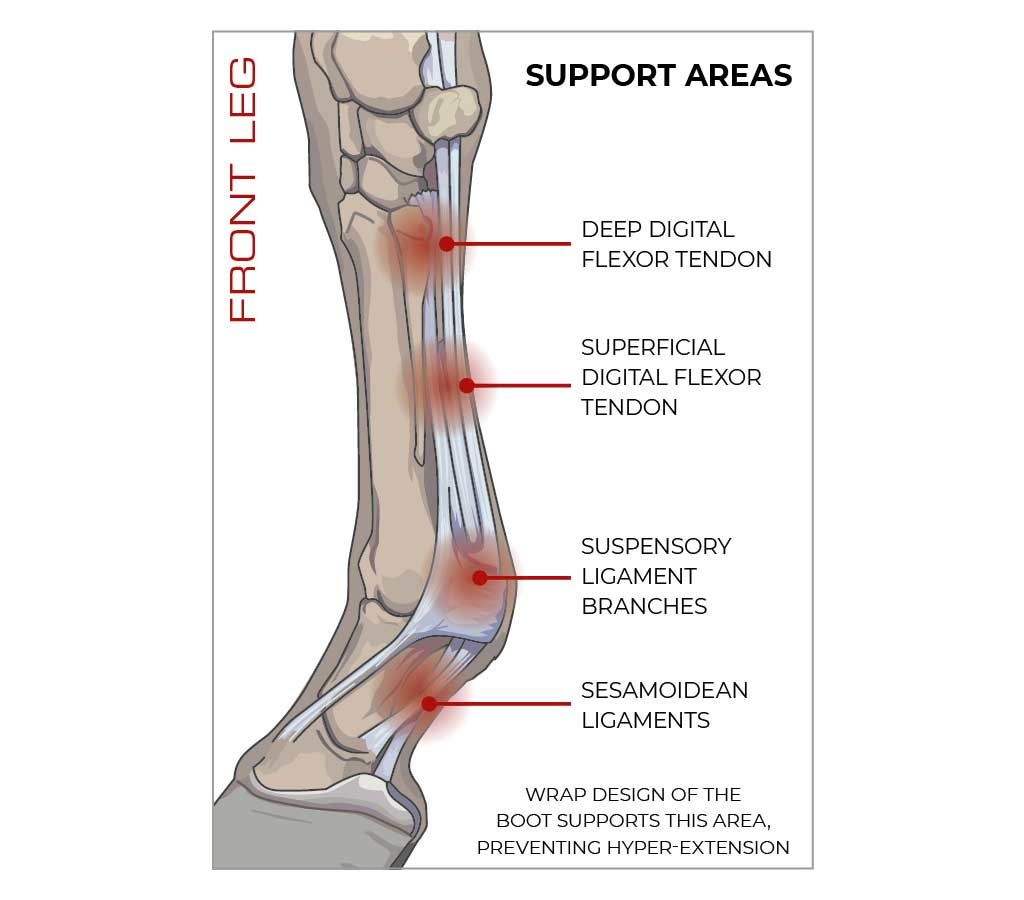 Sports Medicine Boots Infographic