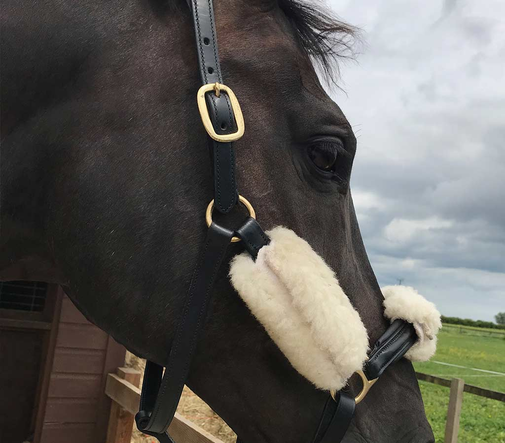 Travel Safety - Leather Head Collar