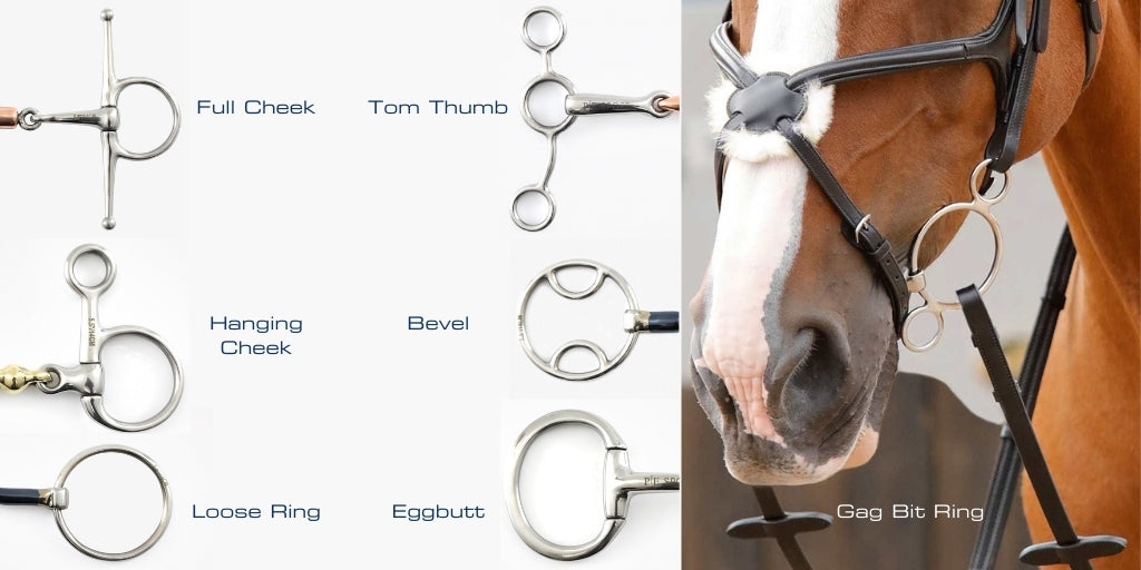 The different types of horse bit rings