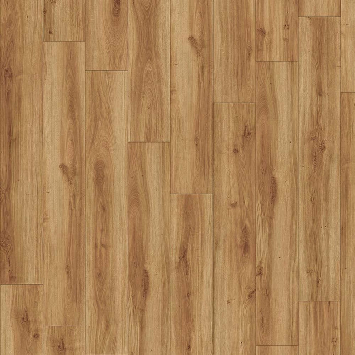 Moduleo Transform Classic Oak Glue Down - Rickwood Flooring Furniture Blinds