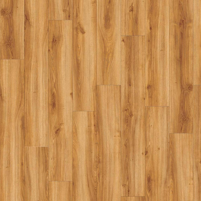 Moduleo Transform Classic Oak Click - Rickwood Flooring Furniture Blinds