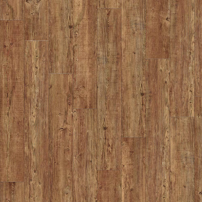 Moduleo Transform Latin Pine Glue Down - Rickwood Flooring Furniture Blinds