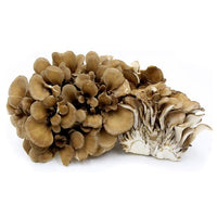 Hen of the Woods Mushrooms