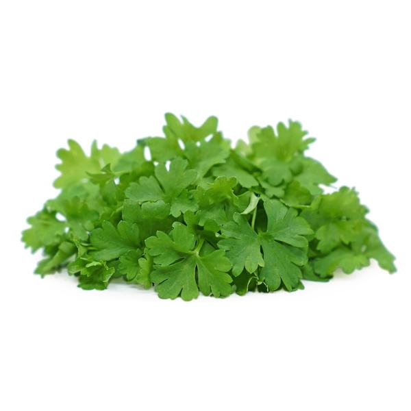 Micro Parsley