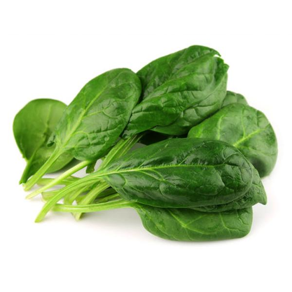 Spinach (Large)