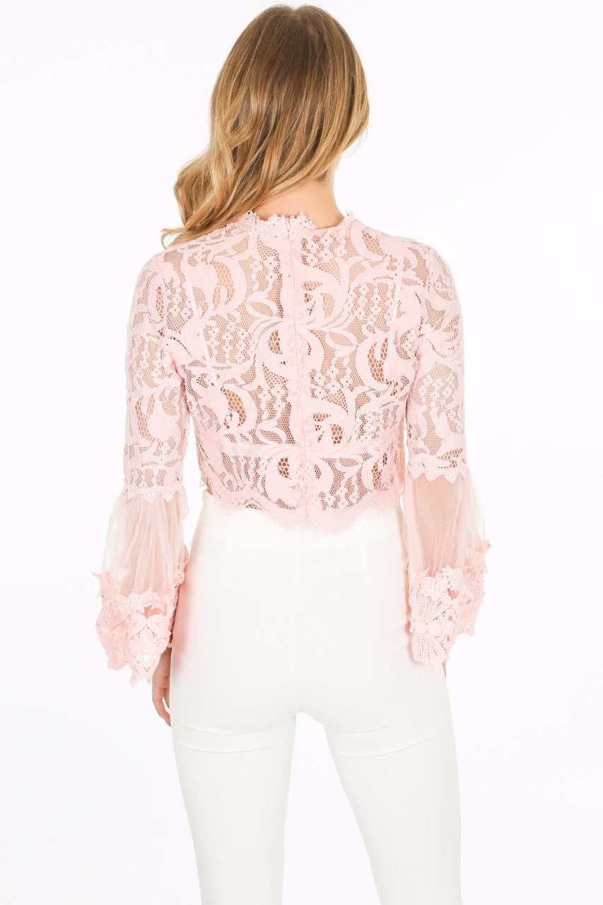 g/469/CY033-_Lace_crop_top_in_pink-3__28235.jpg