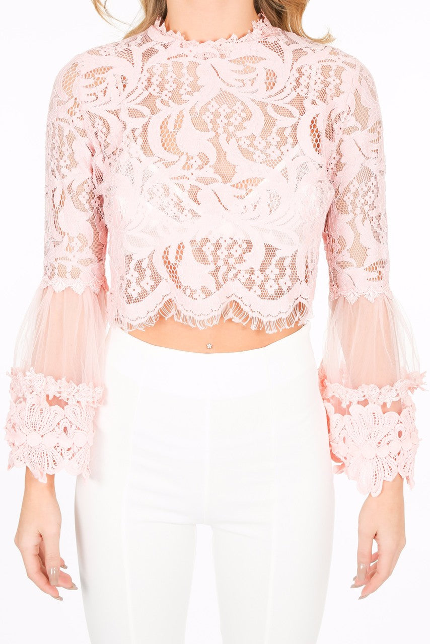 z/241/CY033-_Lace_crop_top_in_pink-5__24821.jpg