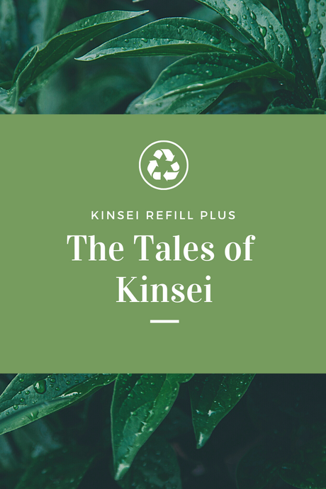What's Going on at Kinsei?