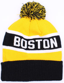 Boston Men Beanie