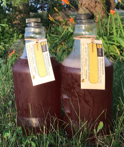 Hibiscus Water Kefir Concentrate - sports drink -- two growlers