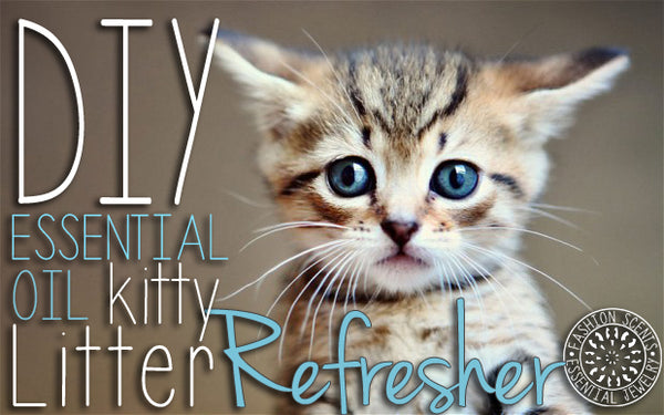 DIY Essential Oil Kitty Litter Refresher – Aroma Couture™