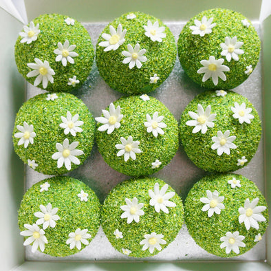 Spring lawn cupcakes - Tuck Box Cakes