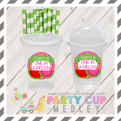 Watermelon Birthday Party Supplies