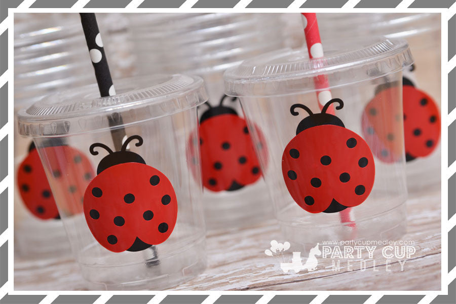 Lady Bug Birthday Party Supplies
