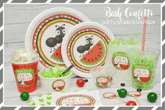 Watermelon Birthday Party Package-133 Pieces