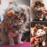Funny Cute Pet Cat Costume Lion Mane Wig Cap Hat For Cat Dog Halloween Christmas Clothes Fancy Dress With Ears Pet Clothes - X-Marks