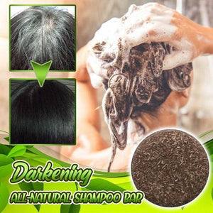 Upgraded Darkening All-Natural Shampoo Bar