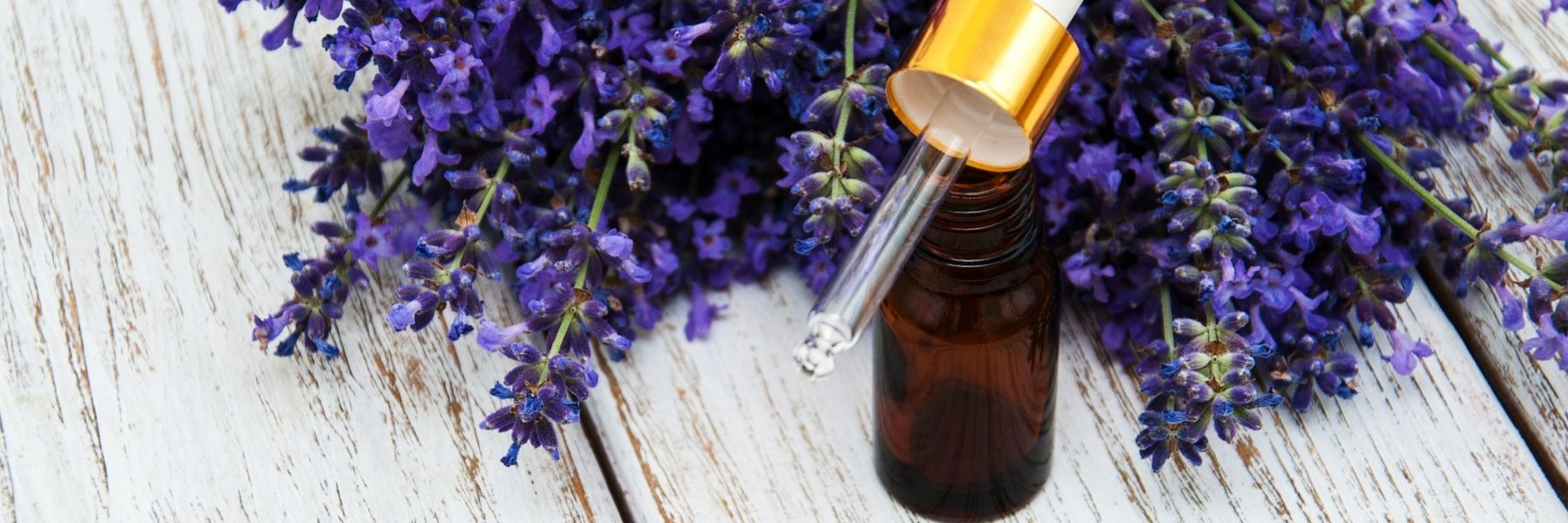 amber glass essential oil bottle with gold and glass dropper with fresh lavender flowers Wild Planet Aromatherapy blog